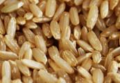 arroz_integral_alimentos_integrais